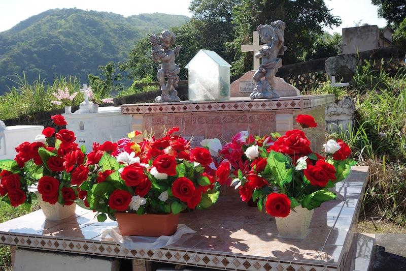 Taboga cemetery red flowers