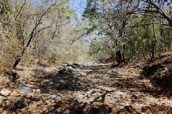dry stream bed Santa Elena