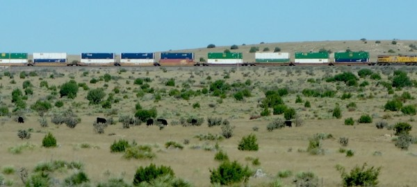 Lots of trains travel across the high plains.