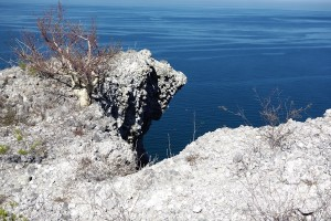 erosion or rock fall at edge of sea cliff
